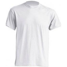 Camiseta M/C colores